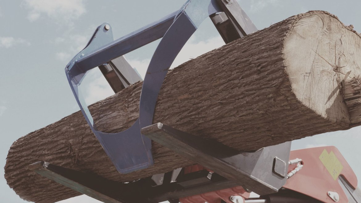 Illegal Logging as a National Problem